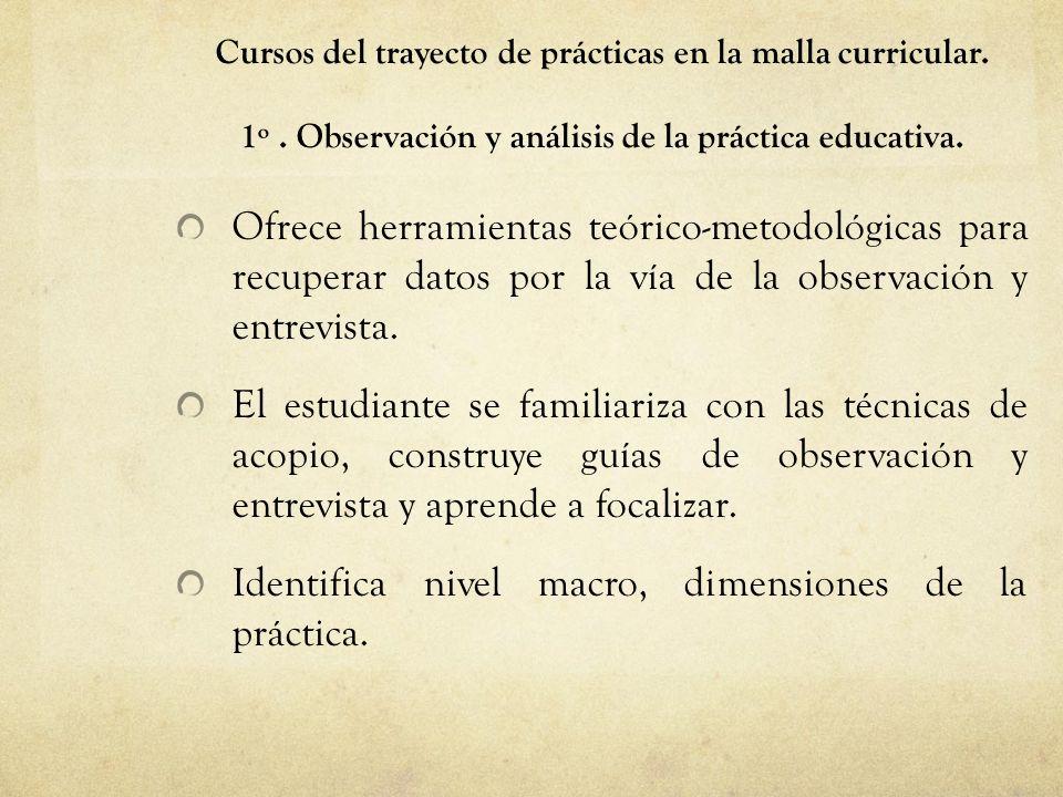 Identifica nivel macro, dimensiones de la práctica.