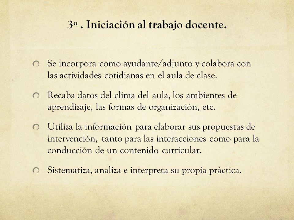 3º . Iniciación al trabajo docente.
