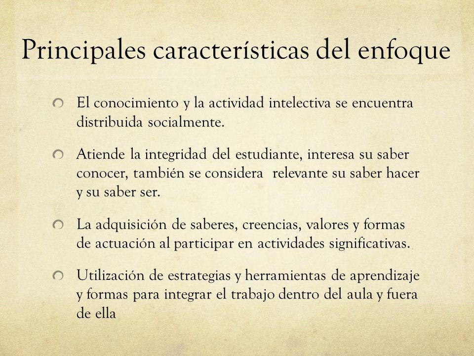 Principales características del enfoque