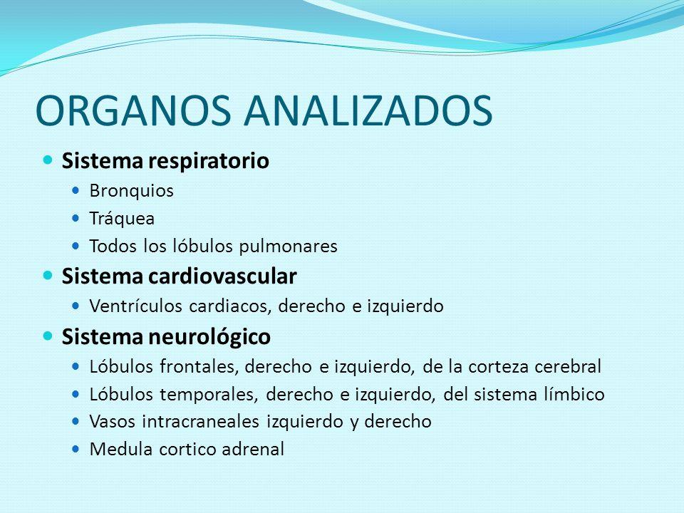 ORGANOS ANALIZADOS Sistema respiratorio Sistema cardiovascular