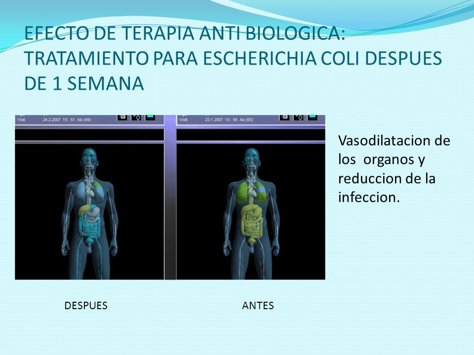 EFECTO DE TERAPIA ANTI BIOLOGICA: TRATAMIENTO PARA ESCHERICHIA COLI DESPUES DE 1 SEMANA
