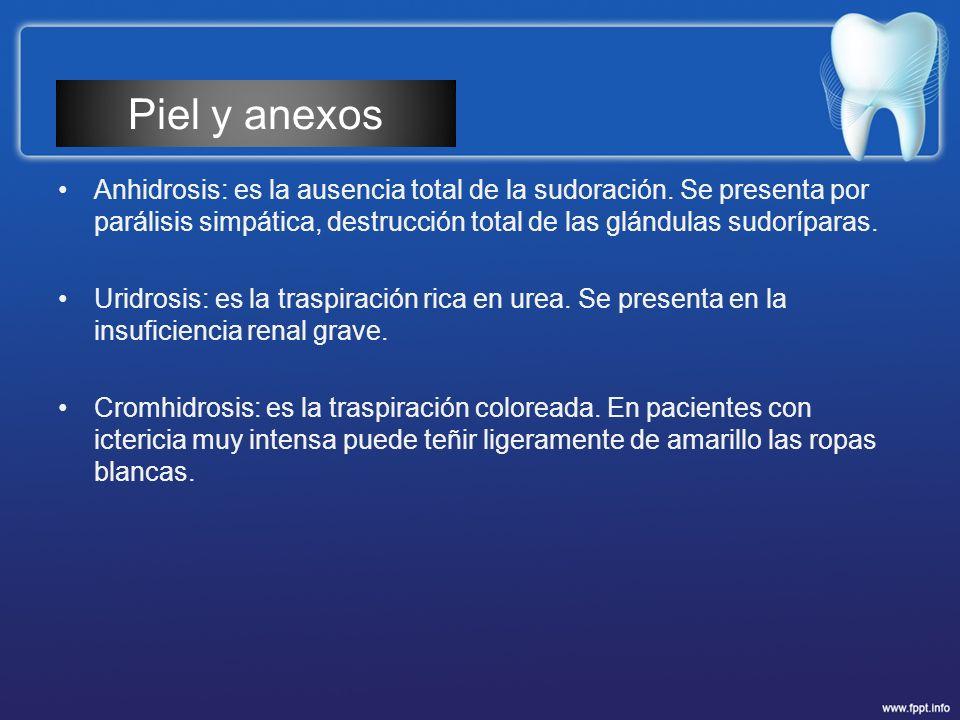 Piel y anexos Anhidrosis: es la ausencia total de la sudoración. Se presenta por parálisis simpática, destrucción total de las glándulas sudoríparas.