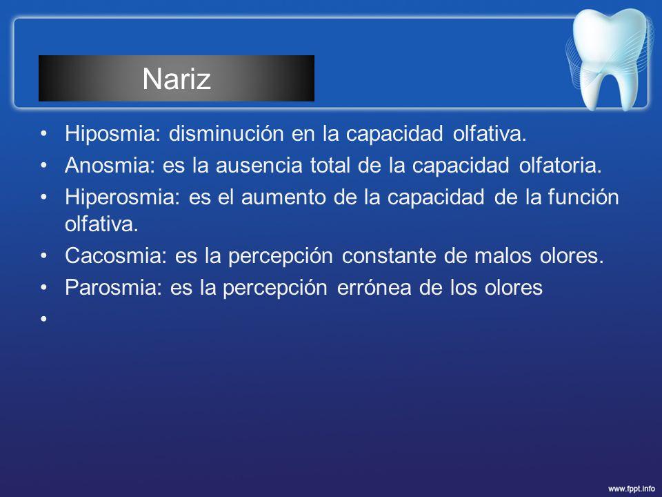 Nariz Hiposmia: disminución en la capacidad olfativa.
