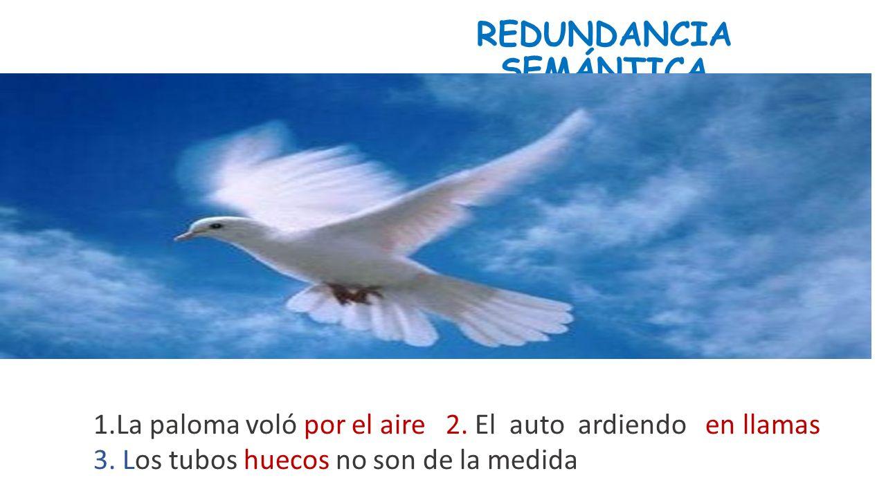 REDUNDANCIA SEMÁNTICA
