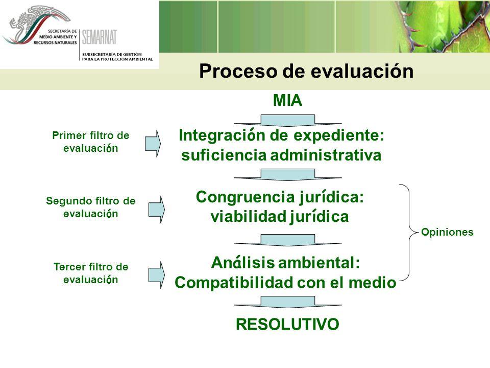 Proceso de evaluación MIA