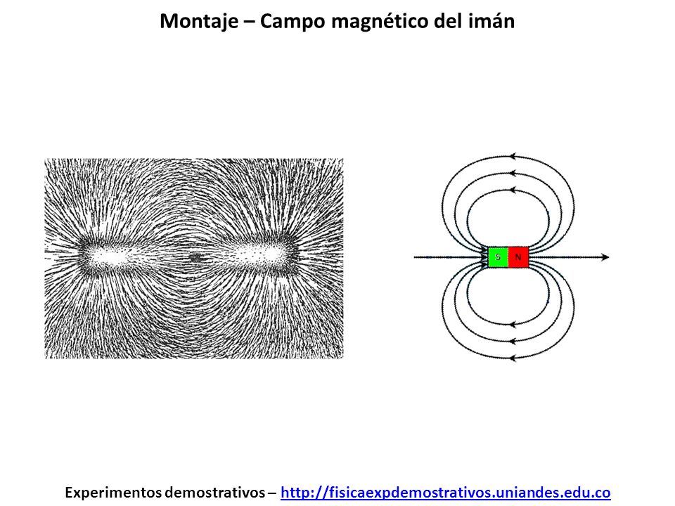 Montaje – Campo magnético del imán