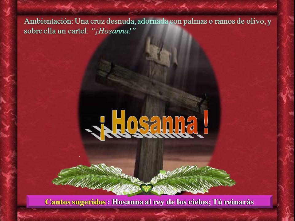 Cantos sugeridos : Hosanna al rey de los cielos; Tú reinarás