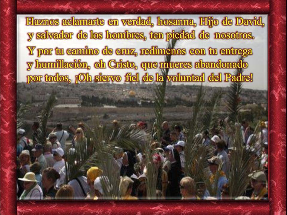 Haznos aclamarte en verdad, hosanna, Hijo de David, y salvador de los hombres, ten piedad de nosotros.