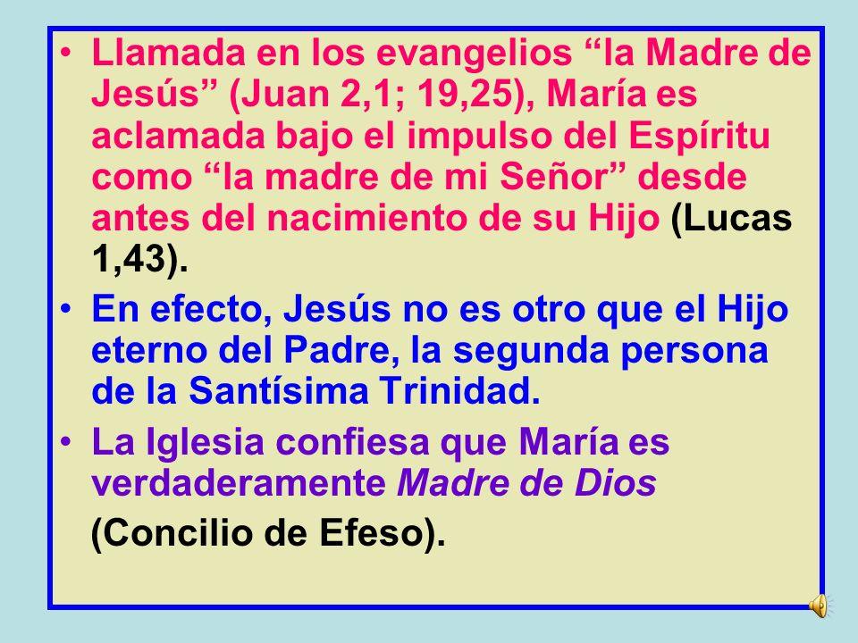 Llamada en los evangelios la Madre de Jesús (Juan 2,1; 19,25), María es aclamada bajo el impulso del Espíritu como la madre de mi Señor desde antes del nacimiento de su Hijo (Lucas 1,43).