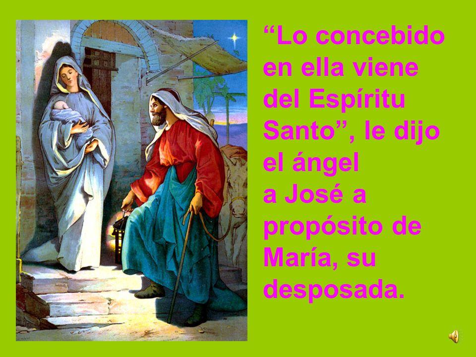 Lo concebido en ella viene. del Espíritu. Santo , le dijo. el ángel. a José a. propósito de. María, su.