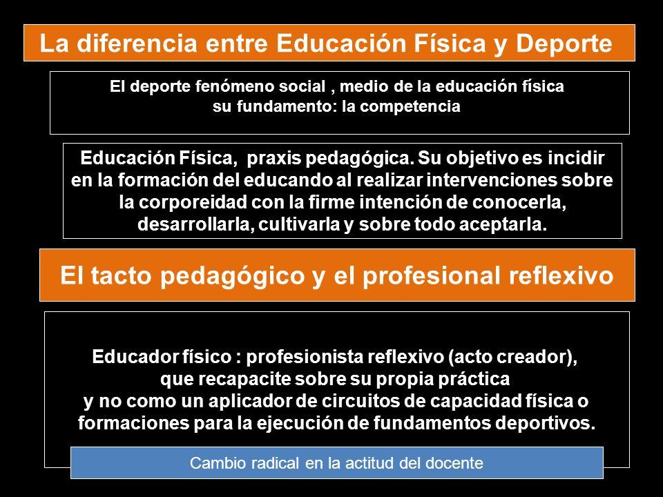 El tacto pedagógico y el profesional reflexivo