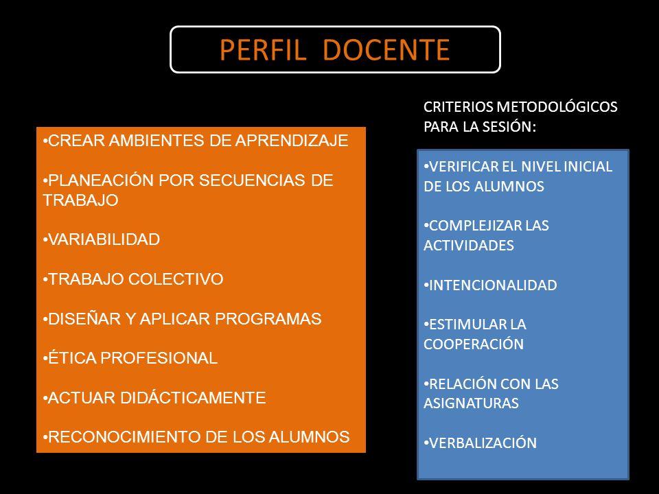 PERFIL DOCENTE CRITERIOS METODOLÓGICOS PARA LA SESIÓN: