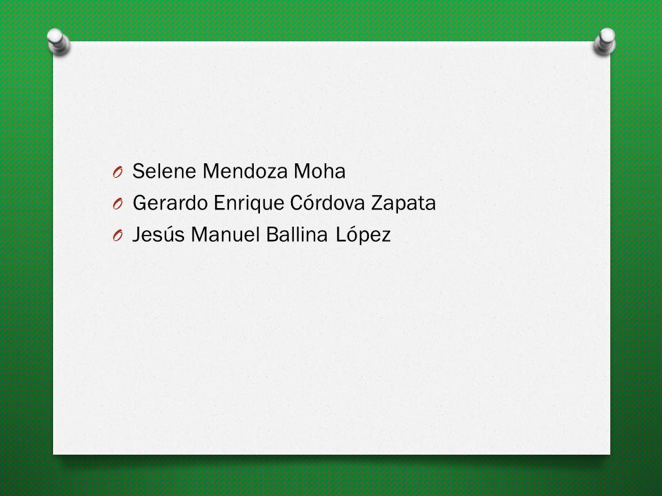 Selene Mendoza Moha Gerardo Enrique Córdova Zapata Jesús Manuel Ballina López