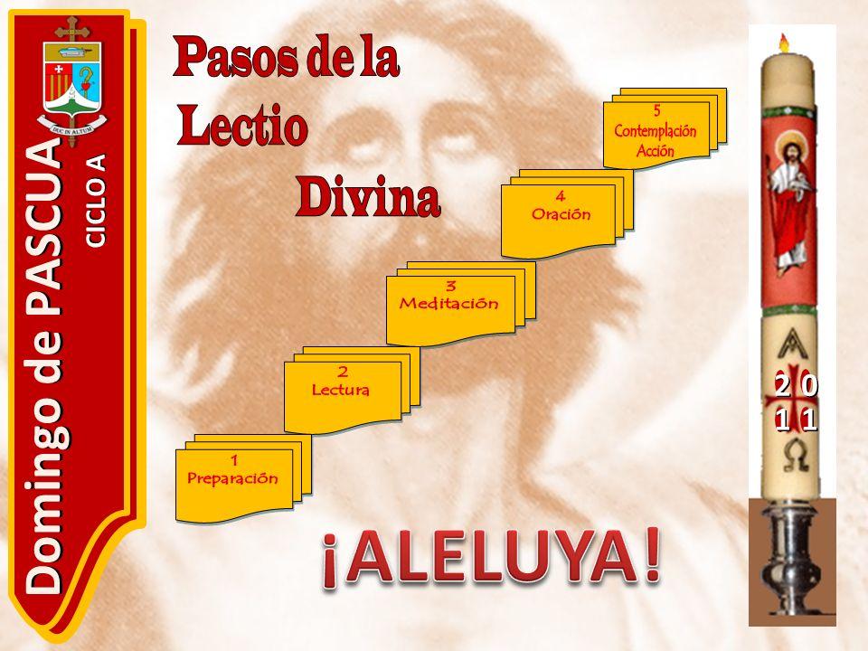 ¡ALELUYA! Domingo de PASCUA 2 1 CICLO A Pasos de la Lectio Divina 5