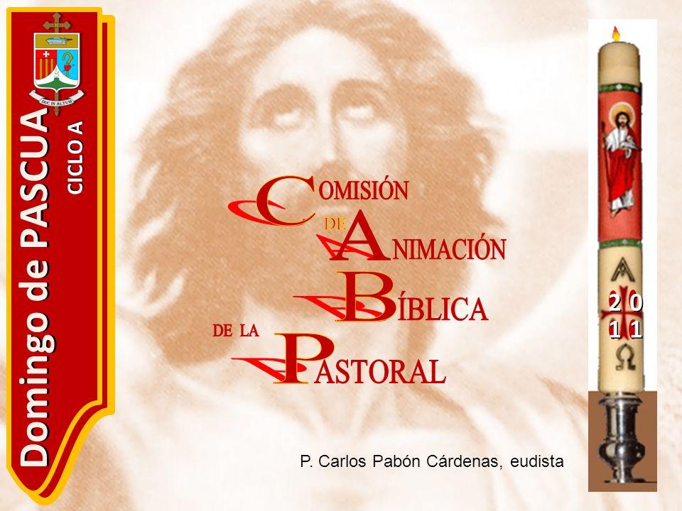 Domingo de PASCUA C A B P 2 1 CICLO A OMISIÓN DE NIMACIÓN ÍBLICA DE LA