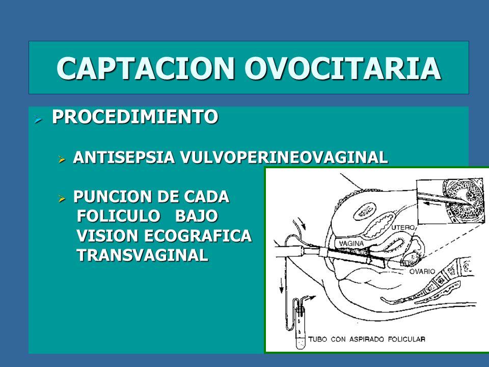CAPTACION OVOCITARIA PROCEDIMIENTO ANTISEPSIA VULVOPERINEOVAGINAL