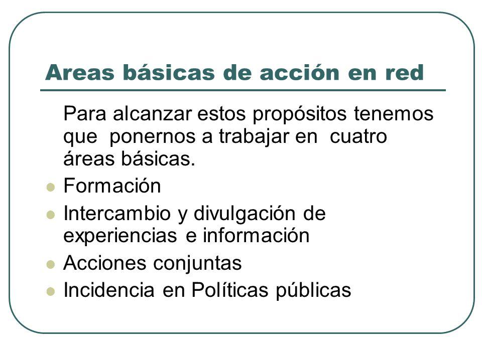 Areas básicas de acción en red