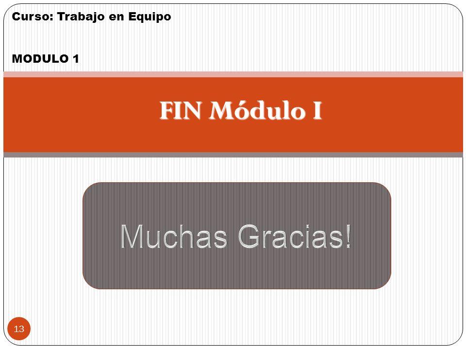 FIN Módulo I Muchas Gracias! 13