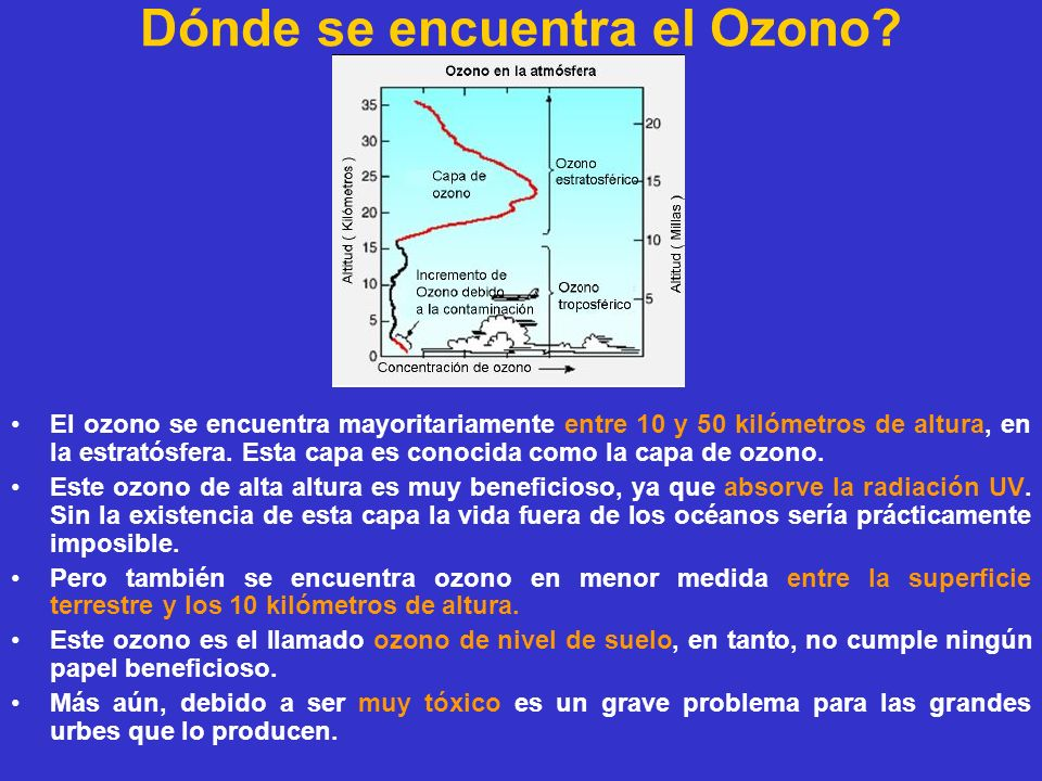 Dónde se encuentra el Ozono