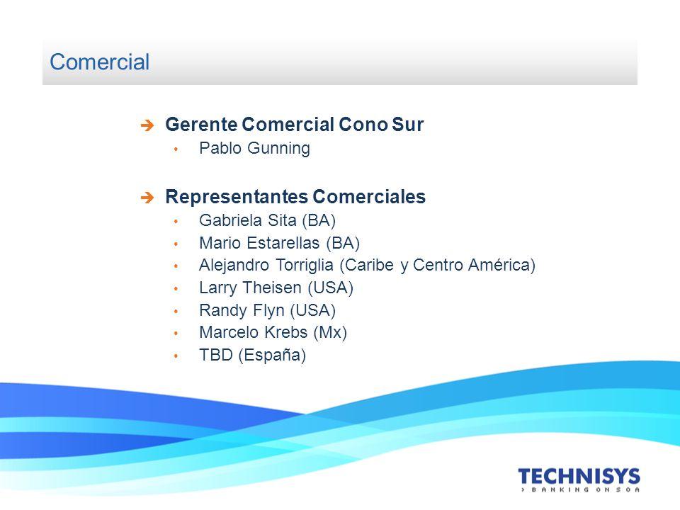 Comercial Gerente Comercial Cono Sur Representantes Comerciales