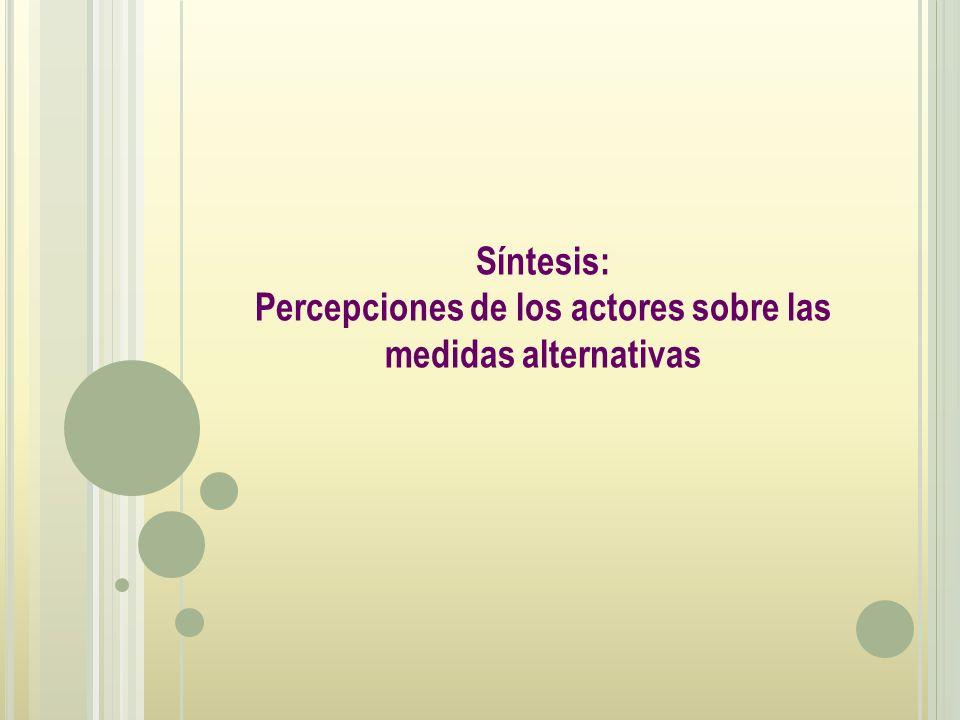 Percepciones de los actores sobre las medidas alternativas