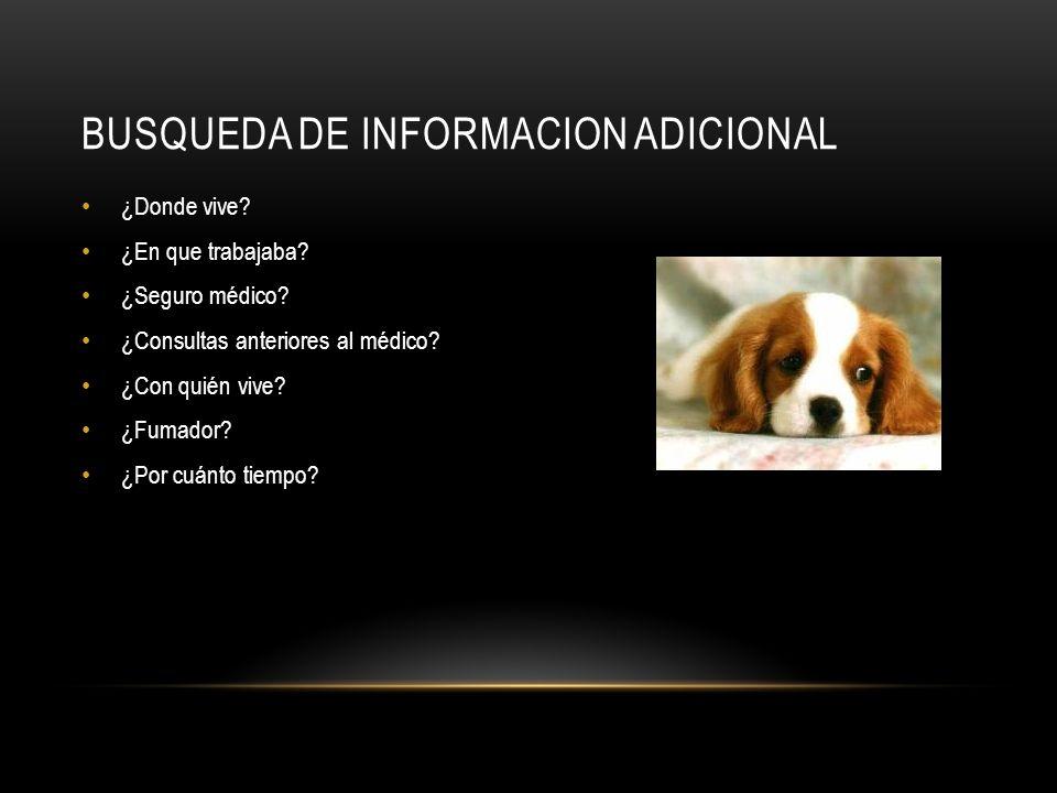 BUSQUEDA DE INFORMACION ADICIONAL
