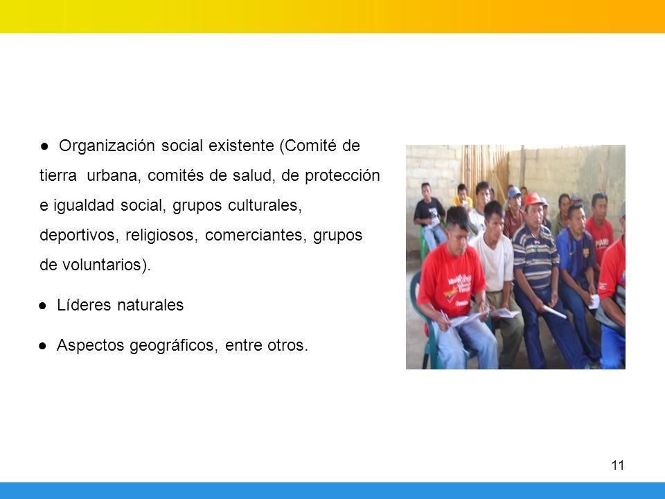 ● Organización social existente (Comité de tierra urbana, comités de salud, de protección e igualdad social, grupos culturales, deportivos, religiosos, comerciantes, grupos de voluntarios).