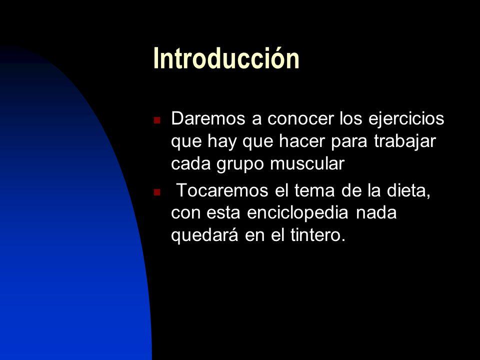 Introducción Daremos a conocer los ejercicios que hay que hacer para trabajar cada grupo muscular.