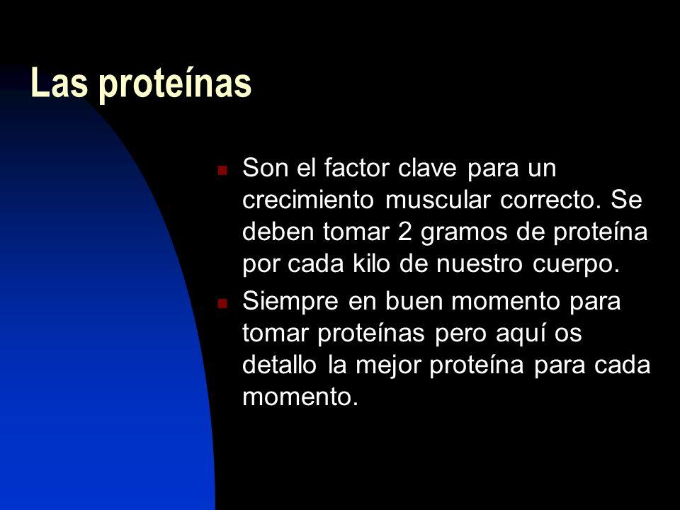Las proteínas Son el factor clave para un crecimiento muscular correcto. Se deben tomar 2 gramos de proteína por cada kilo de nuestro cuerpo.