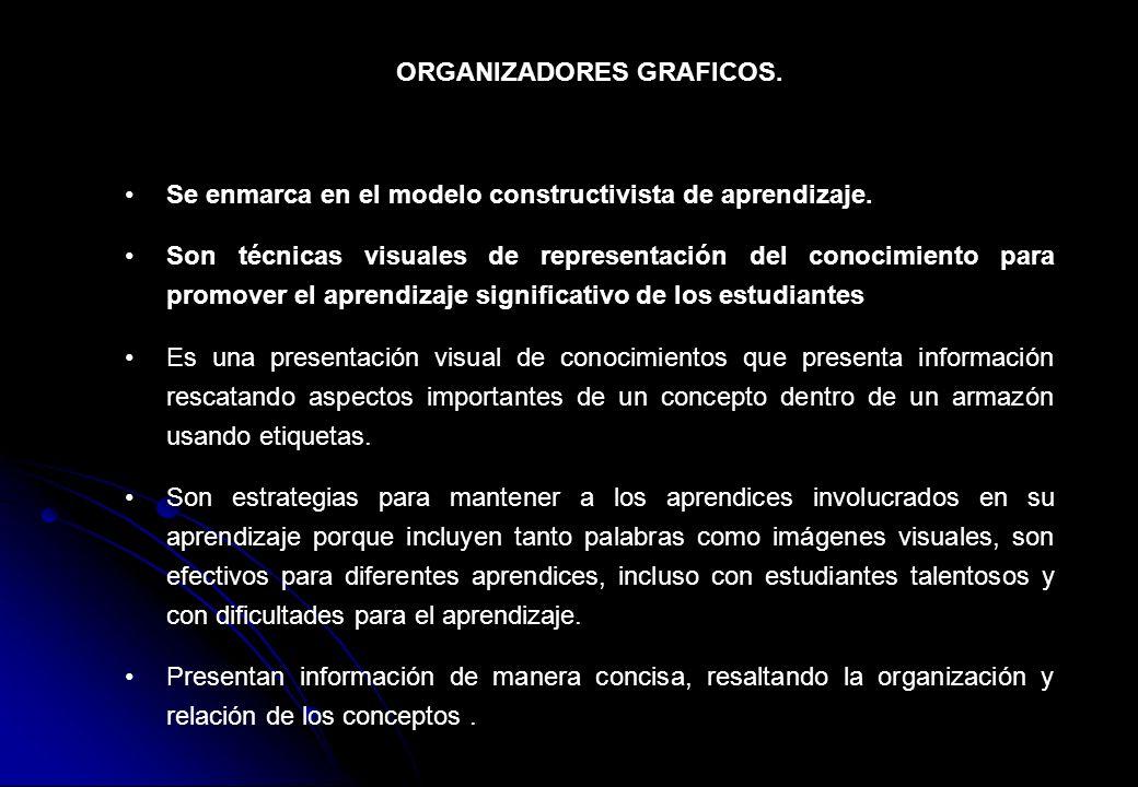 ORGANIZADORES GRAFICOS.