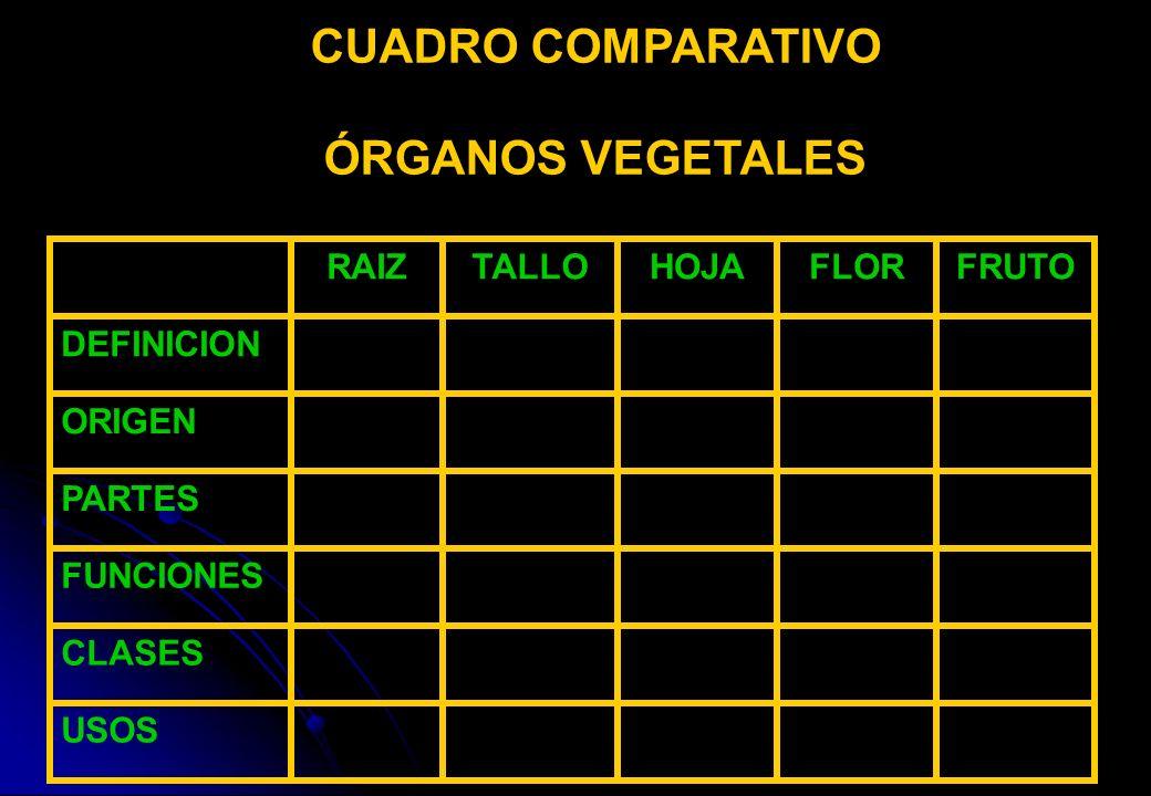 CUADRO COMPARATIVO ÓRGANOS VEGETALES USOS CLASES FUNCIONES PARTES