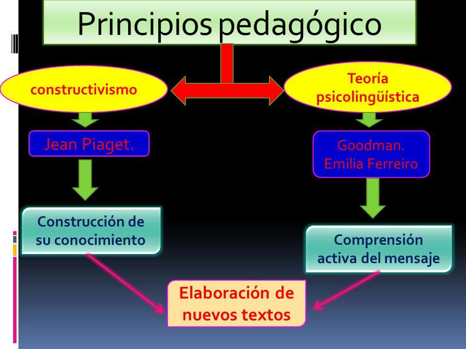 Principios pedagógico