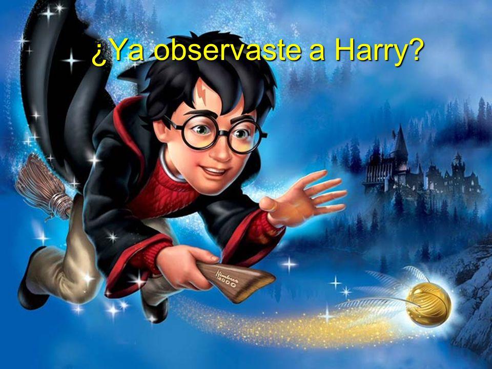 ¿Ya observaste a Harry