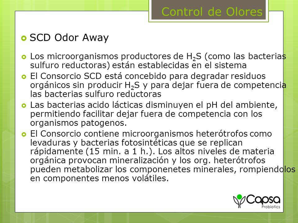 Control de Olores SCD Odor Away