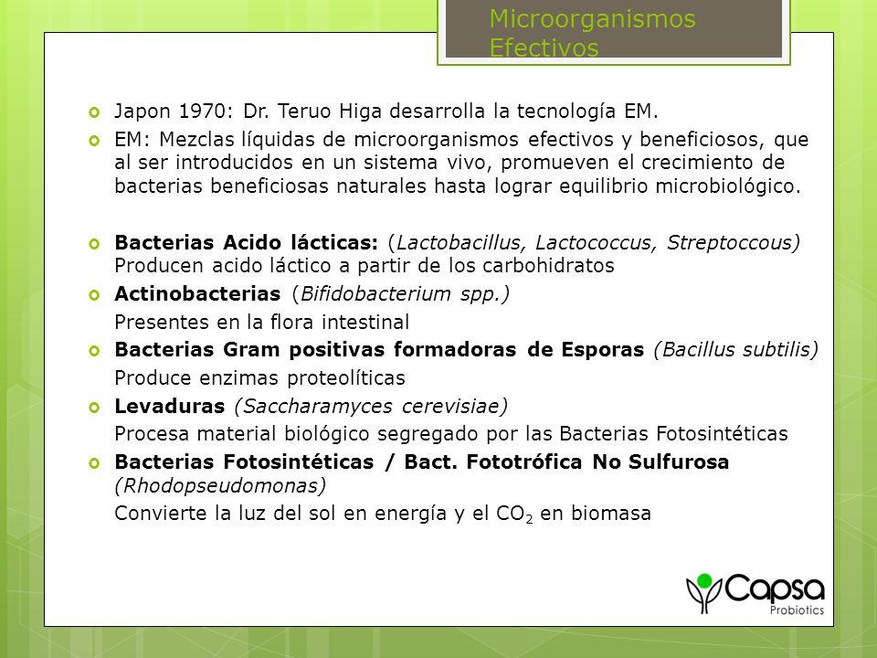 Microorganismos Efectivos