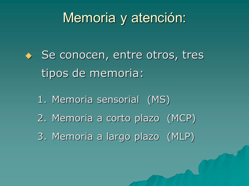 Memoria y atención: Se conocen, entre otros, tres tipos de memoria: