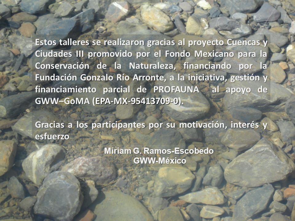 Miriam G. Ramos-Escobedo