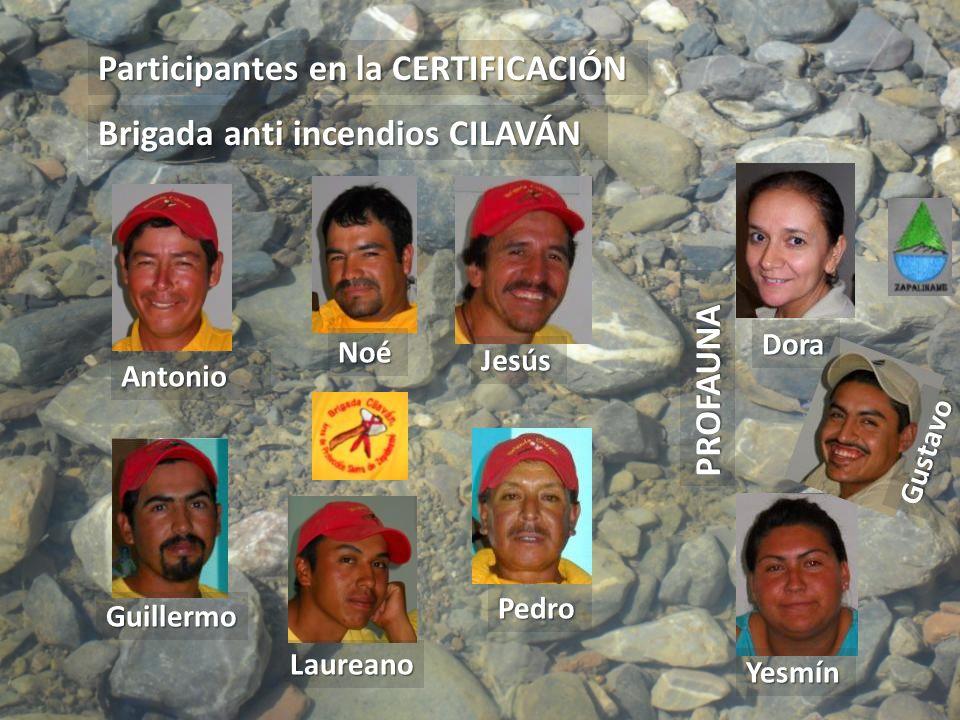 Participantes en la CERTIFICACIÓN