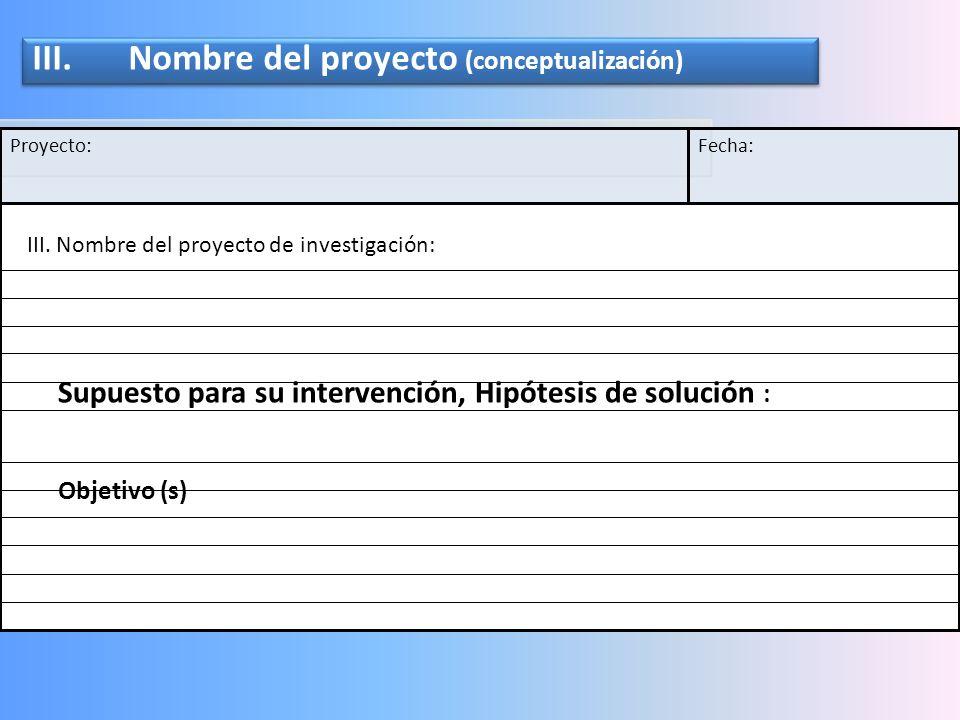 III. Nombre del proyecto (conceptualización)