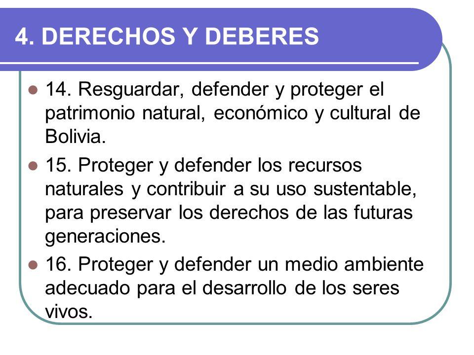 4. DERECHOS Y DEBERES 14. Resguardar, defender y proteger el patrimonio natural, económico y cultural de Bolivia.