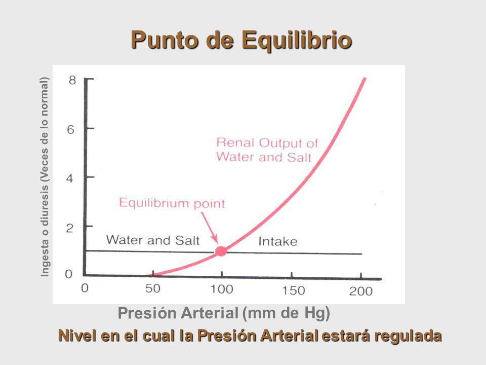 Punto de Equilibrio Presión Arterial (mm de Hg)