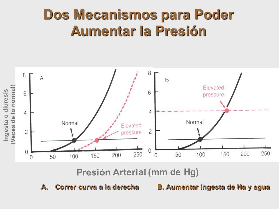 Dos Mecanismos para Poder Aumentar la Presión