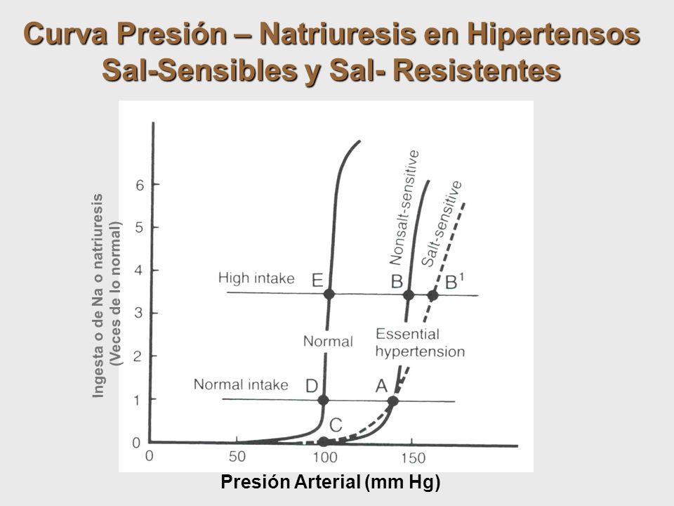 Curva Presión – Natriuresis en Hipertensos