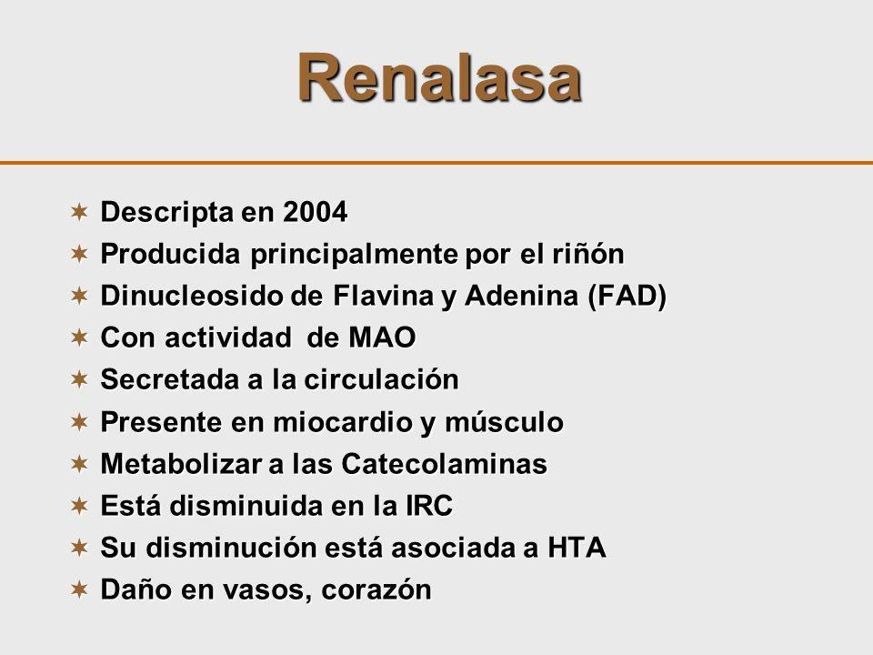 Renalasa Descripta en 2004 Producida principalmente por el riñón