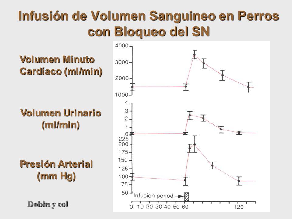 Infusión de Volumen Sanguineo en Perros con Bloqueo del SN