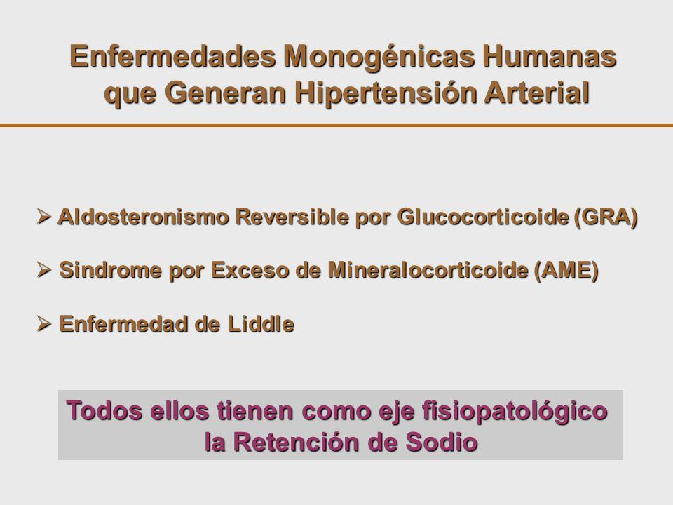 Enfermedades Monogénicas Humanas que Generan Hipertensión Arterial