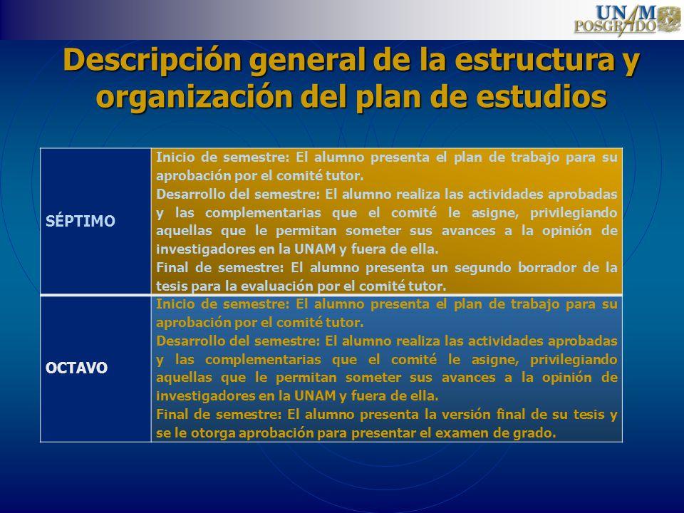Descripción general de la estructura y organización del plan de estudios