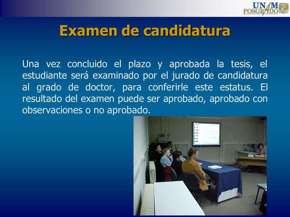 Examen de candidatura