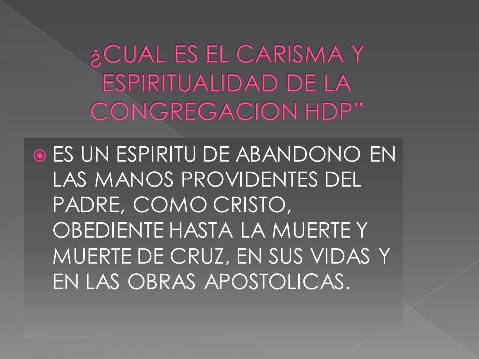 ¿CUAL ES EL CARISMA Y ESPIRITUALIDAD DE LA CONGREGACION HDP