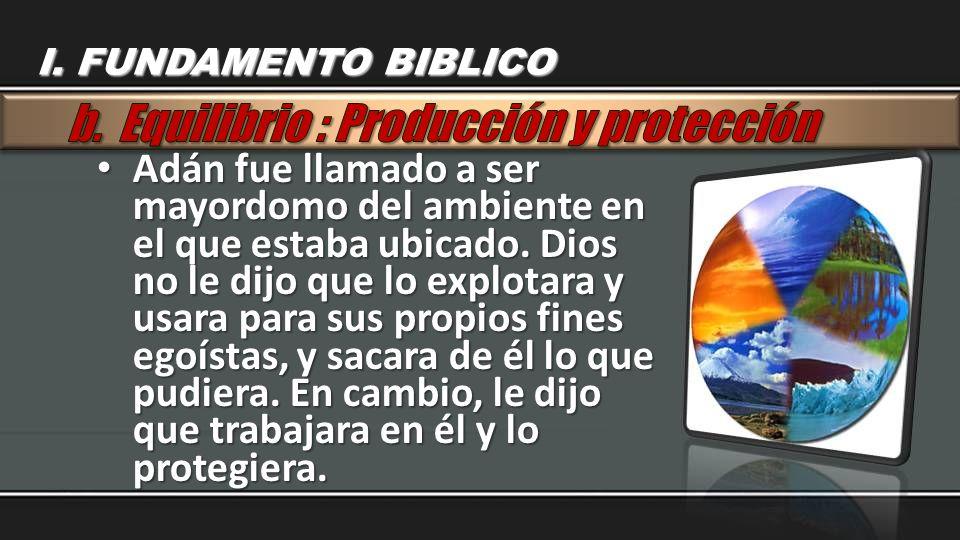 b. Equilibrio : Producción y protección
